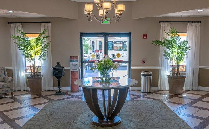 photo of Royal Palm